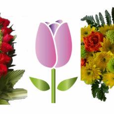 Diseños Florales - Decoración de Eventos